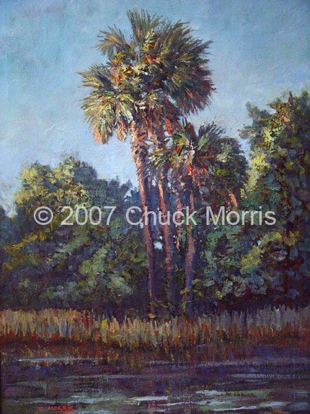 Creek Palms