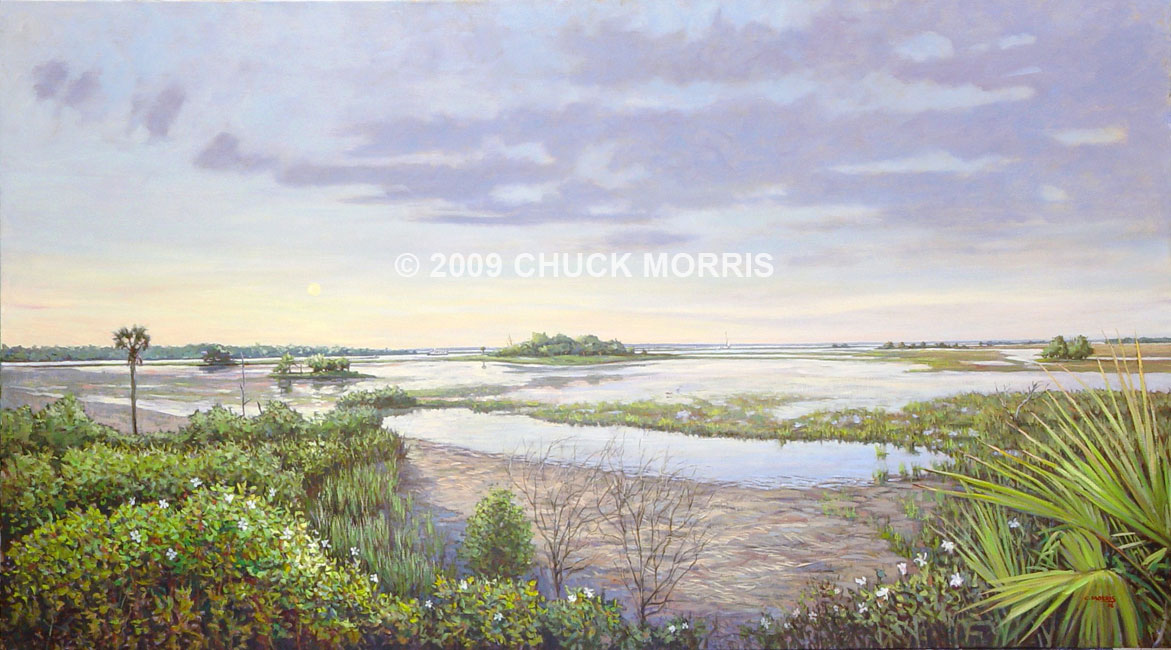 Lynch's Marsh View